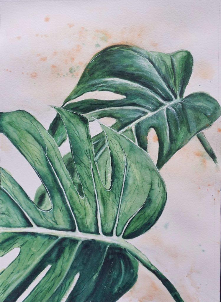 Aquarell Monstera Pflanze. Kunstwerk Kaufen