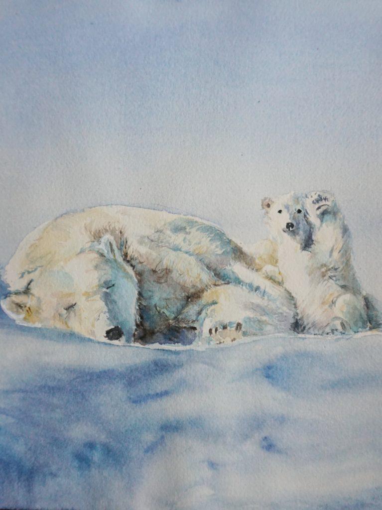 eisbären aquarell auftragsarbeit
